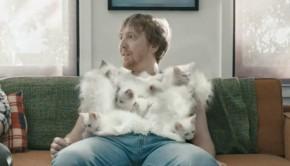 hanes-soft-kittens