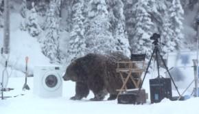 oso-ecobubble