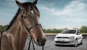 caballo-volkswagen