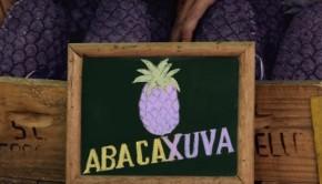 abacaxuva-philips