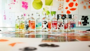 absolut_flavours_redesign_-mini