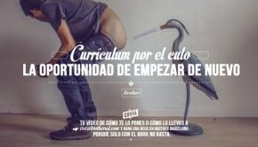 Curriculum-por-el-culo2