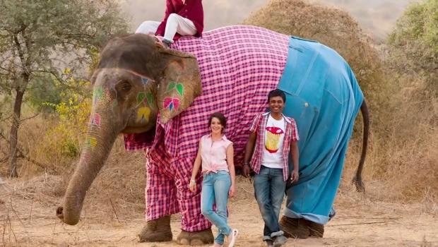 levis-elephant