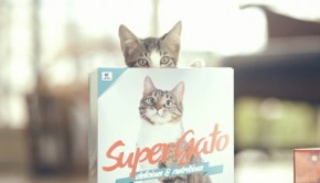 Super-Gato.jpg