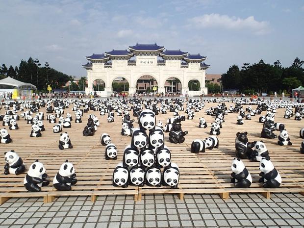 1600-pandas02
