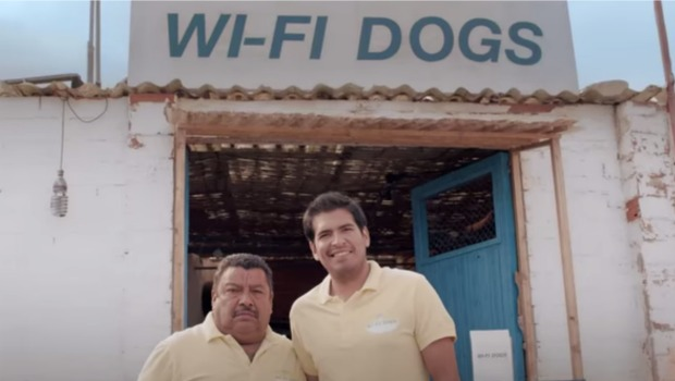 wifi-dogs-jose.jpg