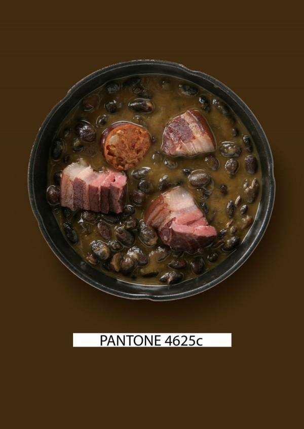 Pantone-food-alubias-negras