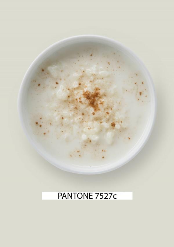 Pantone-food-arroz-con-leche