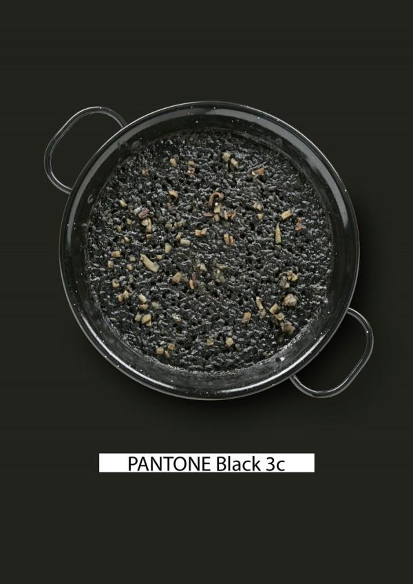 Pantone-food-arroz-negro