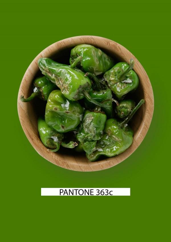 Pantone-food-pimientos-verdes