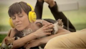 purina-kitten-therapy