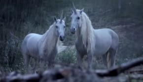 canal+-unicorns