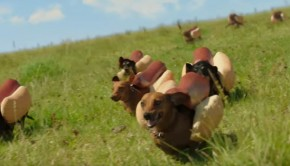 heinz-perritos