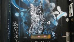 cats-c215-street-art000
